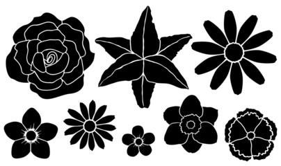 Vector illustration. Set of silhouettes of flowers