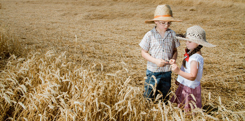Little children in wheat