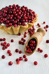 cranberry dessert