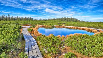 Lovrenc lakes, Slovenia, HDR