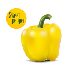 Photo-realistic vector illustration of yellow sweet pepper