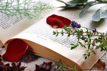 herbs and book