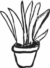 doodle charcoal plant in pot