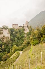 Meran, Südtirol, Vinschgau, Schloss Tirol, Weinberge, Italien
