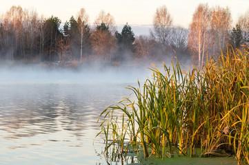 морозное утро на озере