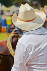 cow boy western