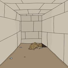 Hole in Prison Floor