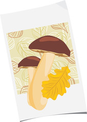 Paper sheet with mushrooms and oak leaf