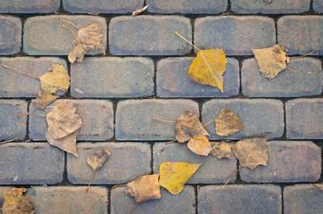 дорога, выложенная из кирпича, с листьями на ней