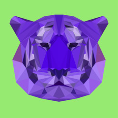 bright colored polygonal tiger background