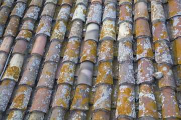 Old rooftops