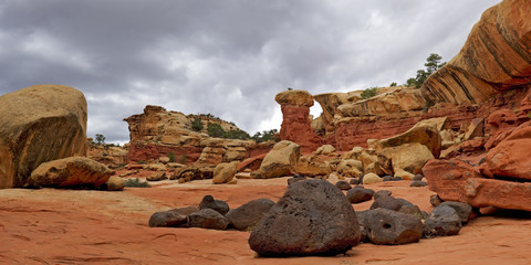 Unique Rock Formation on Cohab Canyon Trail