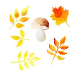 Watercolor leaves set
