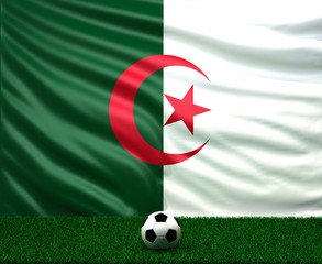 soccer ball with the flag of Algeria