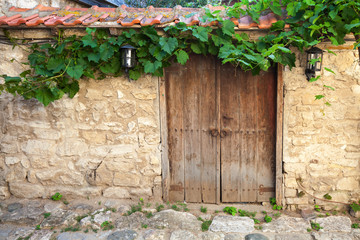 Old wooden door and vine on stone wall, Nessebar