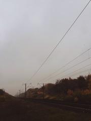 vertical shot of railway