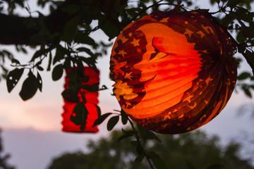 Lampion im Baum, Paper lamp in a tree
