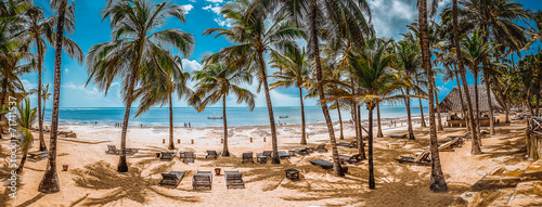Spiaggia di palme - 71711537