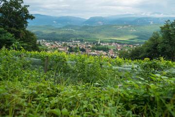 Südtirol / Kaltern