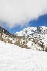 Scorcio di montagna invernale con neve