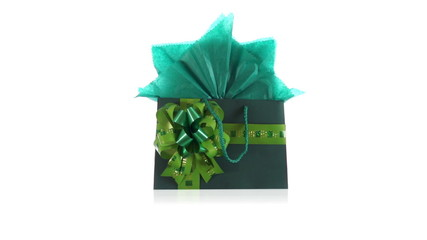 Green Gift Bag Dolly