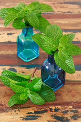 Fresh mint  in blue vase on wooden table