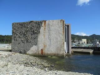 津波で横転した建物
