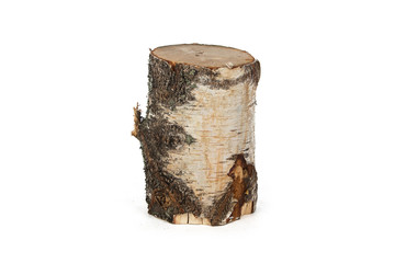 Image of birch stump