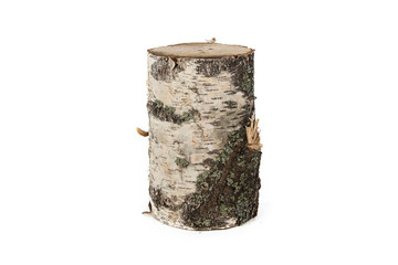 Isolated photo of wood stump