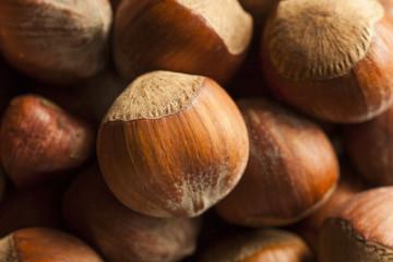Raw Organic Whole Hazelnuts