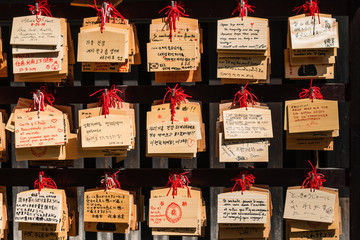 wooden plaques with prayers in Shinto temple