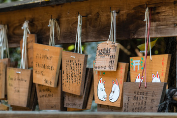 ema - wooden plaques in Shinto temple