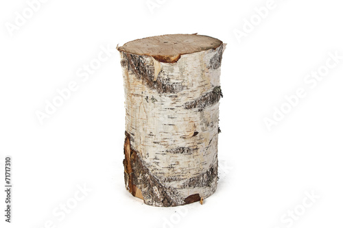 Leinwandbild Motiv Isolated photo of birch stump