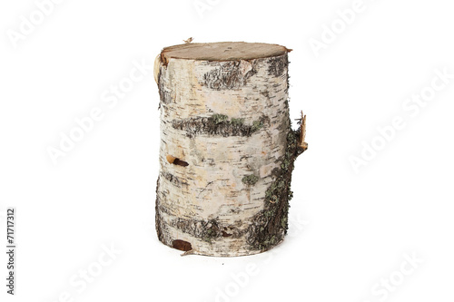Isolated image of birch stump - 71717312