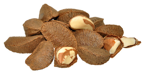 Brazil Nuts In Shells
