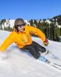 dynamisch skifahren