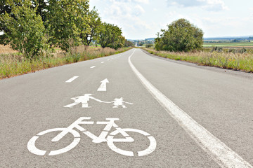 Walk and bike lane. Signs for bicycle and walking painted on the