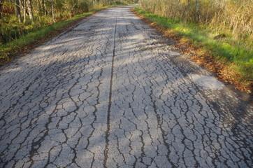 道路のひび割れ