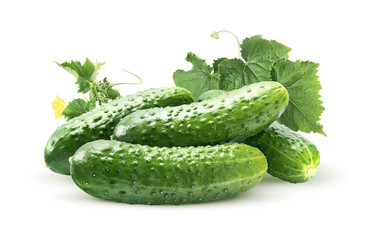 Cucumber group and leaves isolated on white