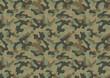 Camouflage seamless pattern - 71725907