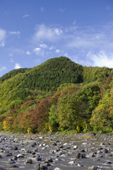 秋の片品川