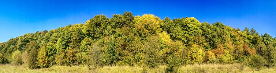 Fairy golden autumn.