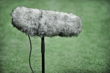 Professional sport microphone