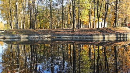 beautiful autumn woods on shore of lake and its reflection