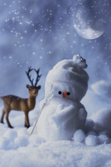 Winter Snowman At Night