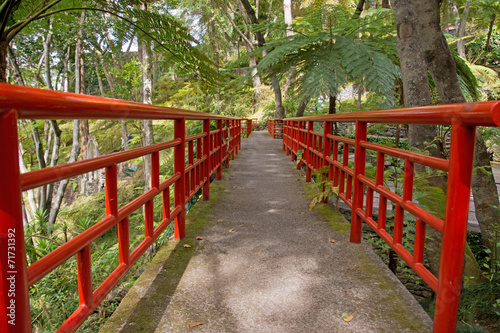 canvas print picture Monte Palace Tropical Garden