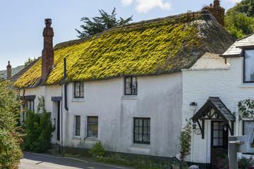 green straw roof cottage at Porlock Weir, Somerset