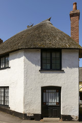 cottage  with straw roof at Porlock, Somerset