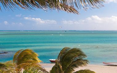 spot de kite-surf sous les cocotiers, île Rodrigues