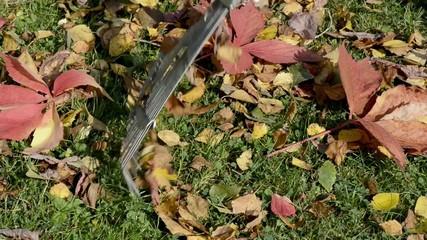 Blätter fegen